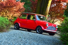 Steve Gay - 1967 Mini Mark I Cooper S